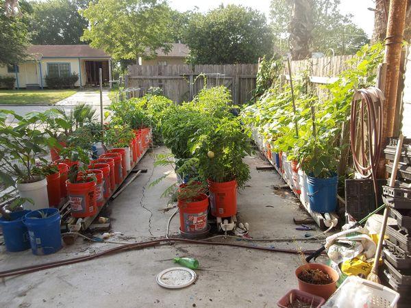 Rain Gutter Self Watering Container Garden System ⋆ Ss Prepper