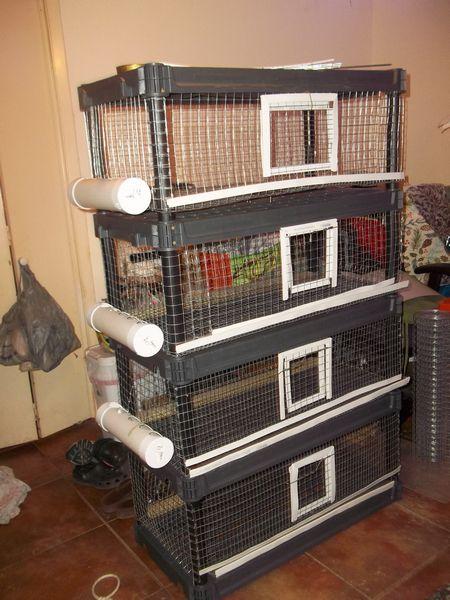 DIY quail pen plan using pre-made shelving system ⋆ SS Prepper